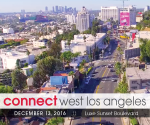 Connect West Los Angeles 2016